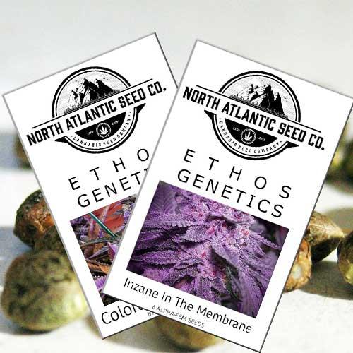 Deals | North Atlantic Seed Company