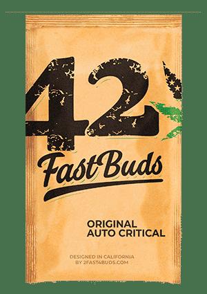 original_auto_critical