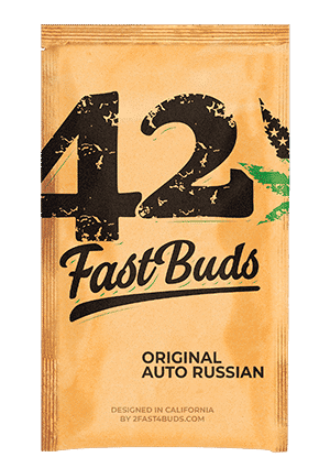 original_auto_russian