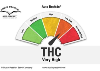 Auto-desfran-terpenes-and-cannabinoids-dutch-passion-cannabis-seed-company